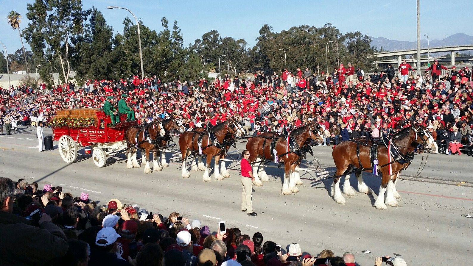 Rose Parade Clydesdales updated 2018